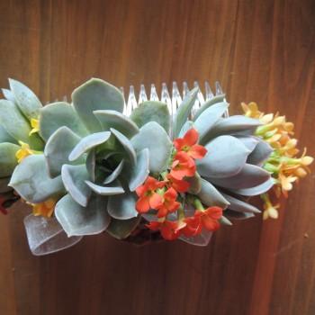 succulent-bouquet 035