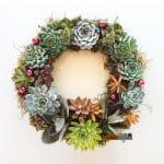 Succulent Christmas wreath.