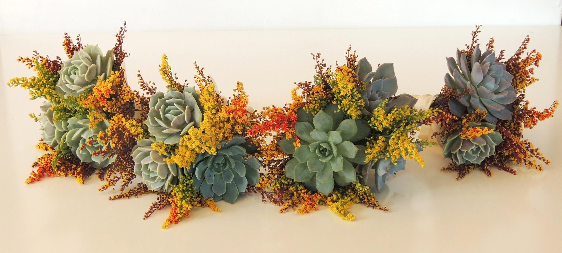 succulents-autum_2148-2b