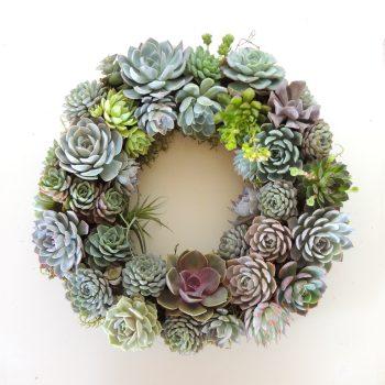 succulent-wreath-1716-sm