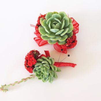 succulent-red-corsage-boutonniere_5332