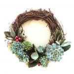 Christmas wreath made with grape vine form and succulents.