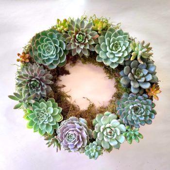 Succulent Spring Wreath