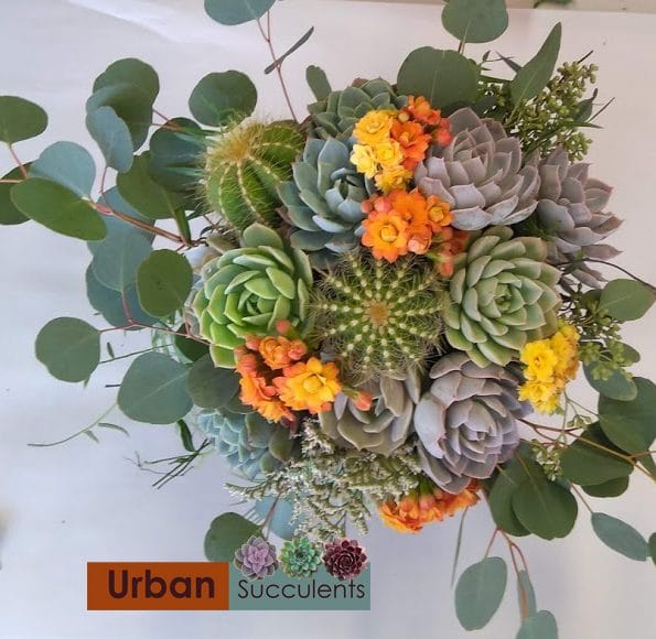 succulent bouquet with cactus